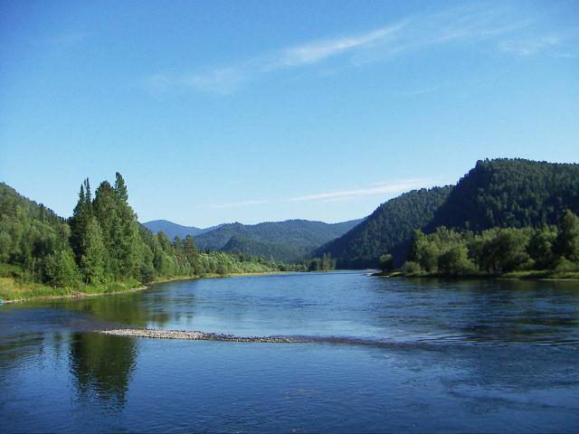 Бия река1