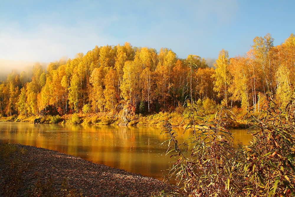 Река Кондома осенью