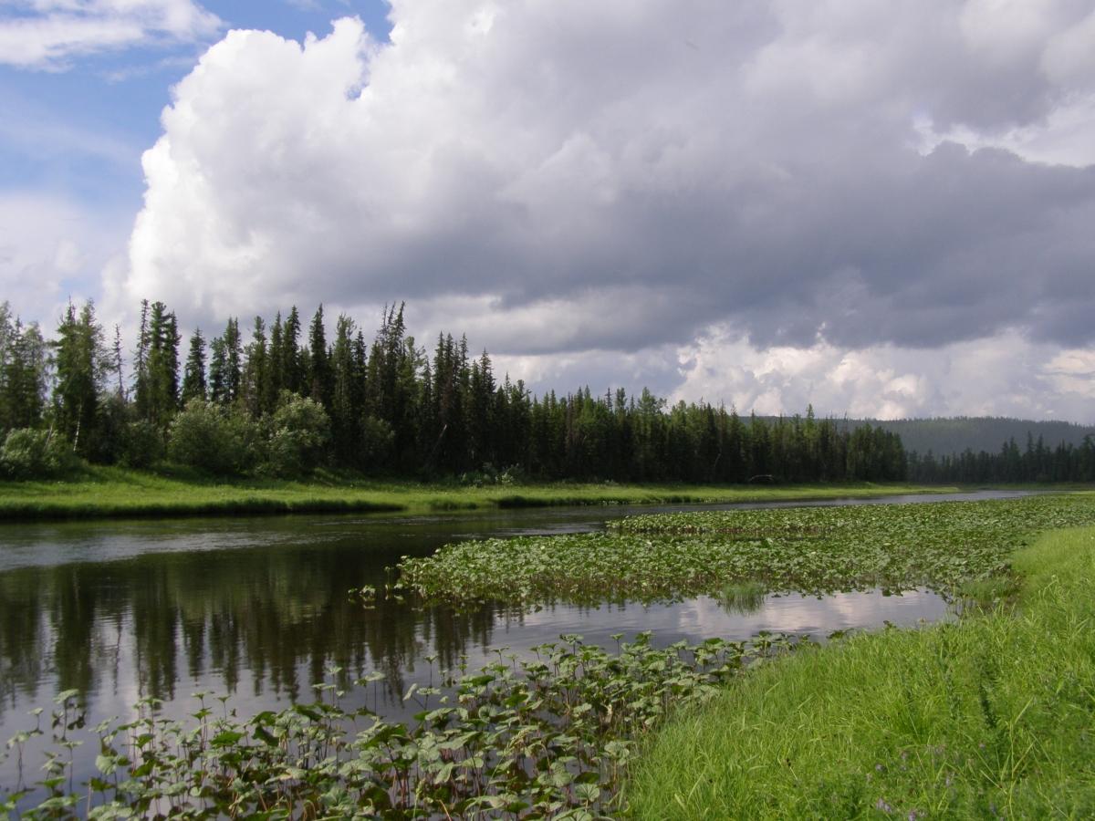 Государственный природный биосферный заповедник Центральной Сибири.