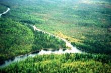Река Балыкса (Балыксу) в Хакасии