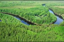 Река Ай-Кагал в Томской области