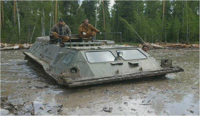 Васюганские болота в Томской области