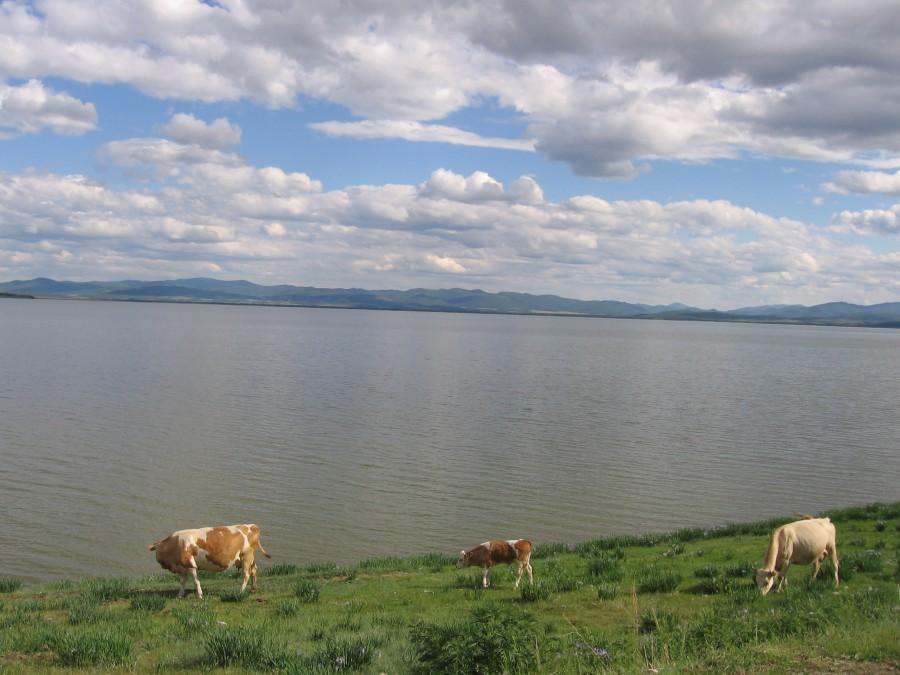 озеро черное хакасия