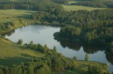 Прогрессовский пруд в Молчановском районе