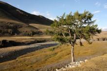 Природный парк «Бугузунский»