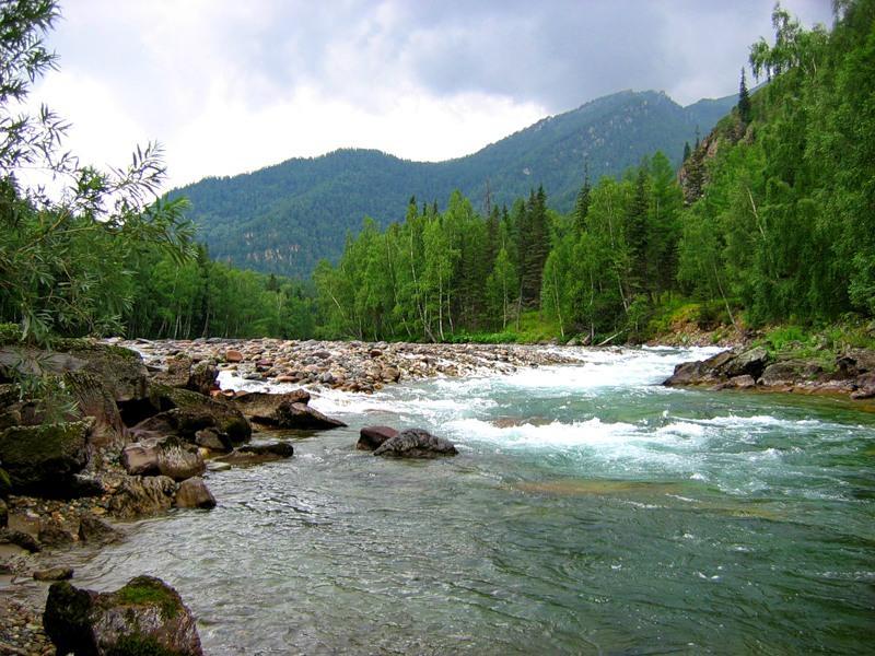 Река Кумир в Горном Алтае