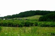 Шерегешский заказник в Кемеровской области
