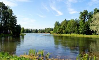 Серебренниковское озеро в Алейском районе