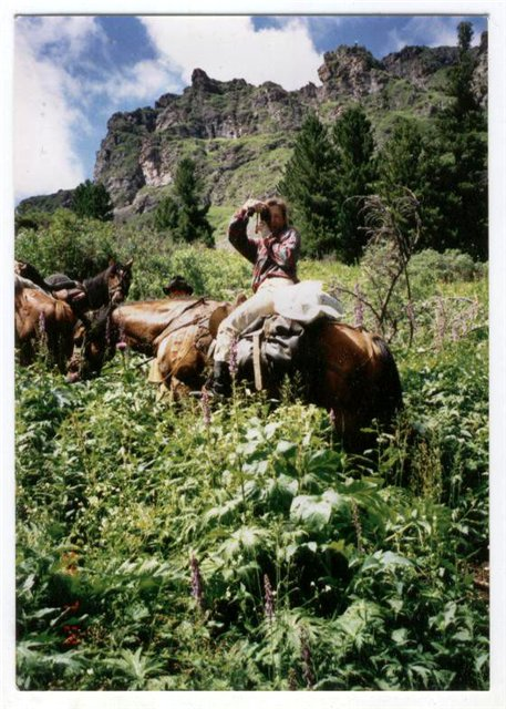Атаманша в Горном Алтае