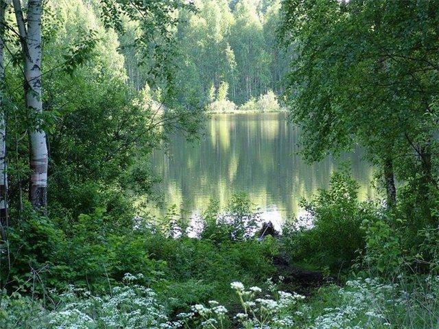 Озера Окунево