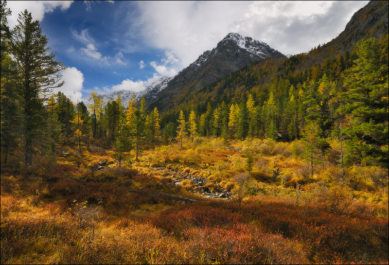 Russia, Altai Republic, Kuyguk river valley