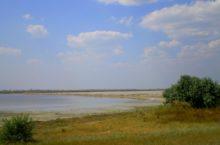Озеро Кривое в Бурлинском районе