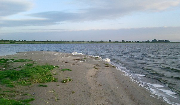 рыбалка в алтайском крае озеро топольное