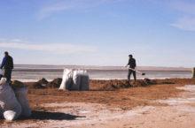 Озеро Баужансор в Благовещенском районе — место отдыха и место добычи рачков артемии