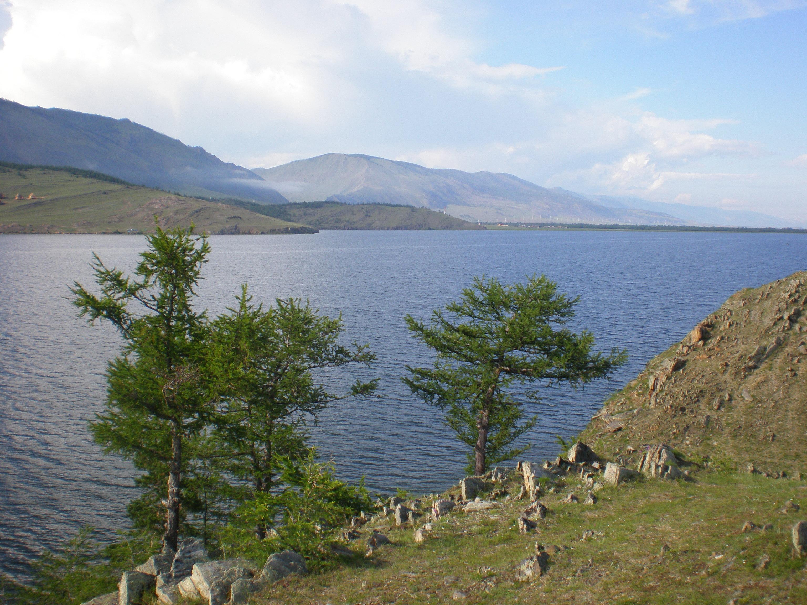 Флора и фауна озера байкал