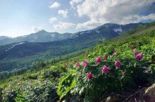 Пестрые горы «Алатау» – отличное место для активных туристов.