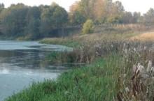 Река Болотная