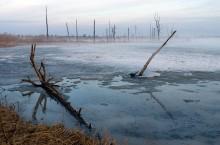 Река Большая Бобровка