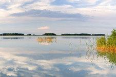Остров Голинский в Новосибирской области