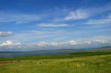 Алтайское (М. Куринка) озеро