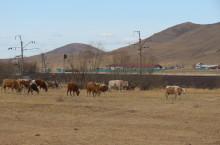Село Бельтирское в Хакасии
