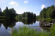 Щучье озеро у посёлка Большой Кордон
