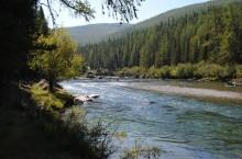 Река Башкаус в Горном Алтае