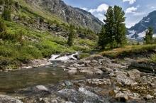 Хребет Листвяга в Горном Алтае