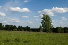 Мошковский район в Новосибирской области