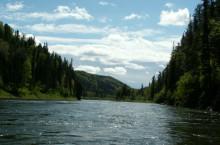 Река Кия в Томской области