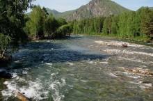 Река Коргон в Горном Алтае.