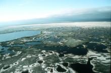 Новосибирск дал старт экспедиции по Васюганскому болоту