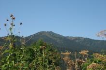 Гора Патын в Горной Шории