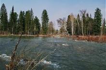 Терсинский заказник в Кемеровской области