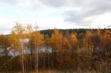 Толкичинский природный заказник в Иркутской области