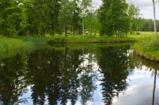 Кадинский природный заказник в Иркутской области