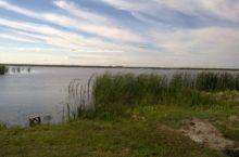Кабанье озеро в Бурлинском районе