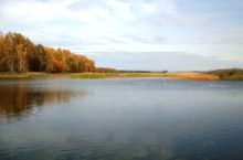 Степное озеро в Алейском районе