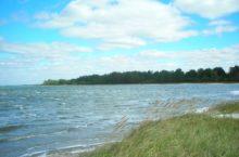 Озеро Горькое в Новичихинском районе