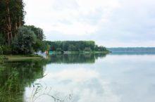 Горькое-Перешеечное озеро в Егорьевском районе