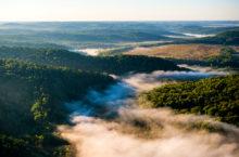 Природа Новосибирской области