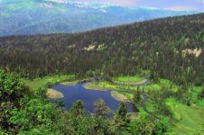 Природа Кемеровской области