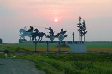 Флора и фауна Новосибирской области