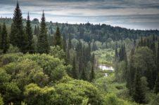 В Маслянинском районе Новосибирской области создадут семейный парк отдыха