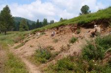 В Забайкальском крае будут охранять динозавров