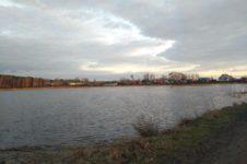 В Алтайском крае углубили озеро. Теперь оно стало глубже и чище