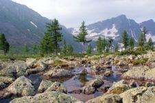 Золотая долина в Республике Хакасия. Золото Кузнецкого Алатау
