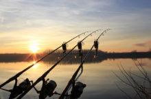 Рыболовная прикормка — из чего состоит и как выбрать качественную