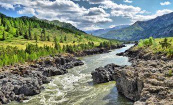 Республика Алтай. В Майме берега Катуни очистили от мусора