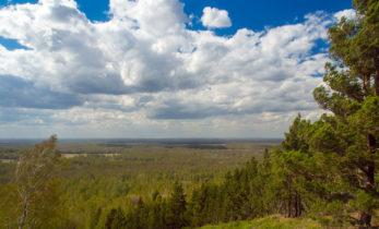 7 мест, которые стоит посмотреть туристу летом в Новосибирской области